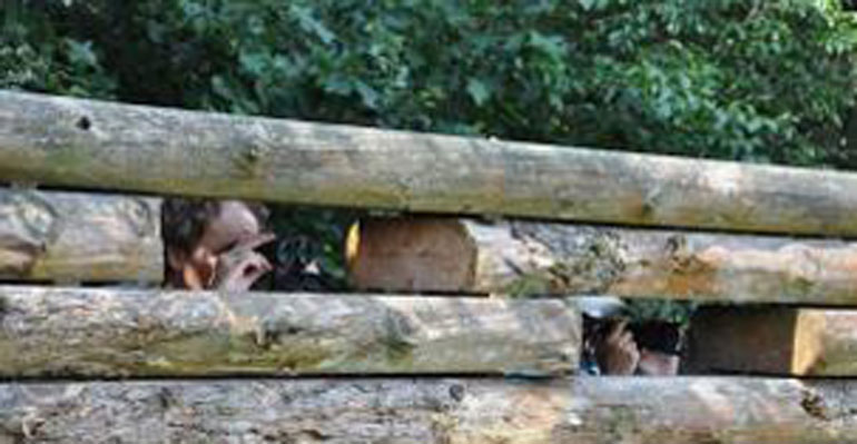 Nieuwe wildobservatieplaats voor de Veluwe