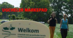 Klompenpad Ugcheler Markepad 770X400